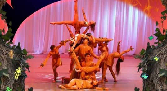 Отчетный концерт Фламинго 2016